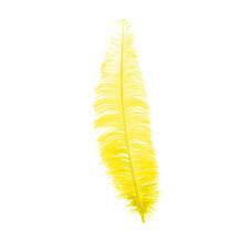 Piuma di struzzo gialla